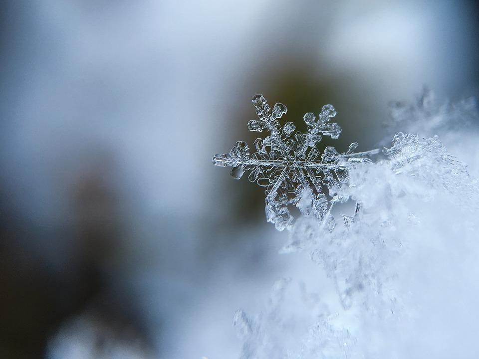 snieg