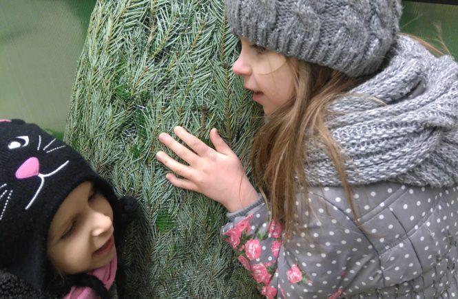 dzieci przytulają się do choinki